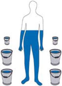 lichaamstemperatuur mens